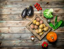 Organic food. Ripe vegetables. On a wooden background stock image