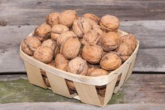 Organic food. salubrious. nuts in a shell Stock Images