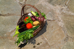 Organic food of vegetables in the basket Royalty Free Stock Photography