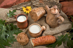 Organic foods bread and milk Stock Image