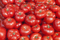 Organic fresh big red ripe tomatoes on the market on sunny day. Close Stock Photo