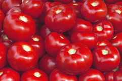Organic fresh big red ripe tomatoes on the market on sunny day. Close Stock Photography