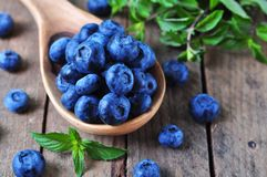 Organic fresh blueberries with peppermint on a wooden background Stock Photo