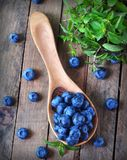 Organic fresh blueberries with peppermint on a wooden background Royalty Free Stock Photography