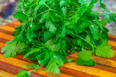 Organic fresh bunch of parsley closeup on a kitchen tray Royalty Free Stock Image