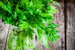 Organic fresh bunch of parsley in a glass jar closeup Royalty Free Stock Image