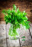 Organic fresh bunch of parsley in a glass jar Royalty Free Stock Images