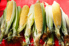Organic fresh corn from mediterranean farmers market in Provence Stock Photos