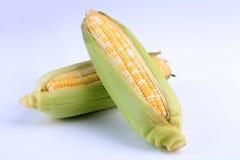 Organic fresh corns isolated on white background Stock Photo