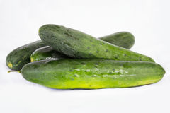 Organic fresh cucumbers  on white Stock Images
