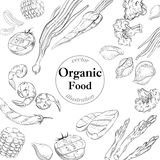 Organic fresh food banner. Linear  vector illustration Stock Photography