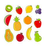 Organic fresh fruits and berries outline icons Stock Photos
