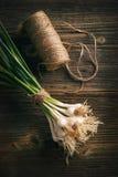 Organic fresh garlic Stock Image