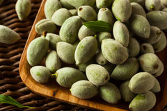 Organic Fresh Green Almonds. In a Bowl Royalty Free Stock Photography