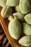 Organic Fresh Green Almonds. In a Bowl Royalty Free Stock Image