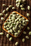Organic Fresh Green Almonds Royalty Free Stock Photography