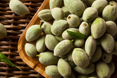 Organic Fresh Green Almonds. In a Bowl Stock Image