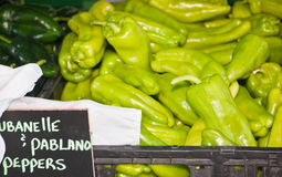 Organic, fresh, local peppers Stock Photography
