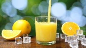 Organic Fresh Orange Fruit Juice Pour into Glass