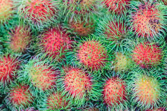 Organic fresh rambutan for sale at the fruit market. Rambutan (N. Ephelium lappaceum) is a medium-sized tropical tree in the family Sapindaceae Royalty Free Stock Photos