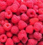 Organic fresh raspberries background. Dinner Royalty Free Stock Images