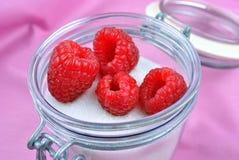 organic fresh raspberries in a sugar pot Stock Images