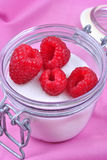 organic fresh raspberries in a sugar pot Royalty Free Stock Photo