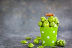 Organic fresh raw brussels sprouts in a metal bucket on gray bac. Kground, copy space Royalty Free Stock Photos