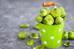 Organic fresh raw brussels sprouts in a metal bucket on gray bac. Kground, copy space Royalty Free Stock Photography