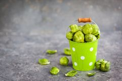 Organic fresh raw brussels sprouts in a metal bucket on gray bac. Kground, copy space Royalty Free Stock Image