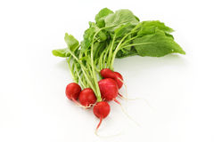 Organic fresh red Radish. On white background Royalty Free Stock Image