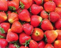 Organic Fresh strawberry background Royalty Free Stock Image