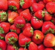Organic Fresh strawberry background Stock Image
