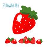 Organic fresh strawberry on white background  Stock Image
