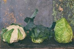 Organic fresh summer vegetables - different varieties of cabbages on wooden background. Cauliflower, kohlrabi, broccoli, white hea. D cabbage. Raw food Stock Photography