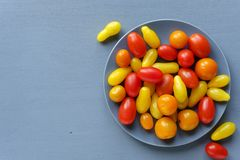 Organic fresh tomatoes on grey plate royalty free stock image