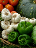 Organic fresh vegetables Royalty Free Stock Photography