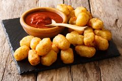 Organic fried tater tots made from fried potato and ketchup clos. E-up on the table. Horizontal Royalty Free Stock Photos