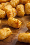 Organic Fried Tater Tots Royalty Free Stock Photo