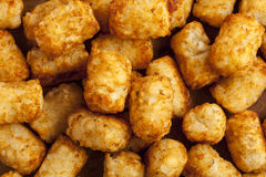 Organic Fried Tater Tots. Made from fried potato Royalty Free Stock Photos
