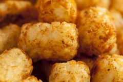 Organic Fried Tater Tots Royalty Free Stock Photography