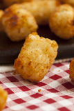 Organic Fried Tater Tots Stock Photography