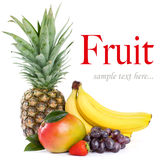 Organic fruit Royalty Free Stock Photography