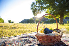 Organic fruit in basket in summer grass. Fresh grapes, bananas and oranges in nature Stock Image