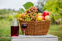Organic fruit in basket in summer grass. Decanter and glass of wine. Organic fruit in basket in summer grass. Fresh grapes, pears and apples in nature royalty free stock image