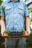 Farmer with blackberries royalty free stock image