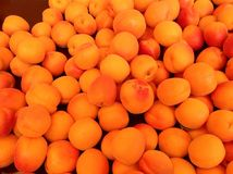 Organic fruit at farmers market. Apricots orange colorful summer fruit healthy food diet Royalty Free Stock Images