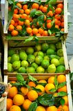Organic fruit market Stock Photos
