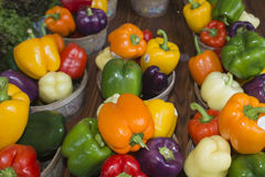 Organic Fruit and vegetables: pepper Stock Photos