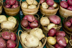 Organic Fruit and vegetables: potatoes Stock Image